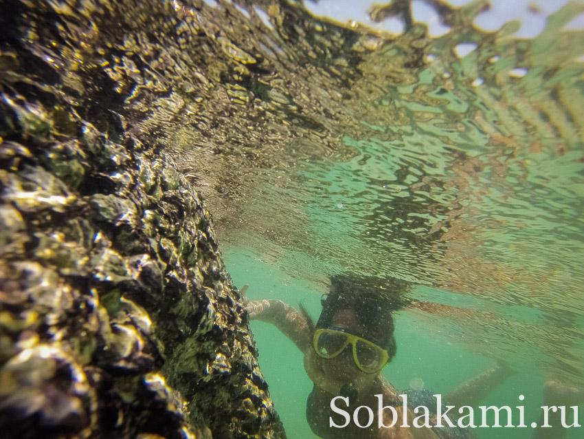 Пхукет: как добраться, лучшие отели и пляжи тайского курорта