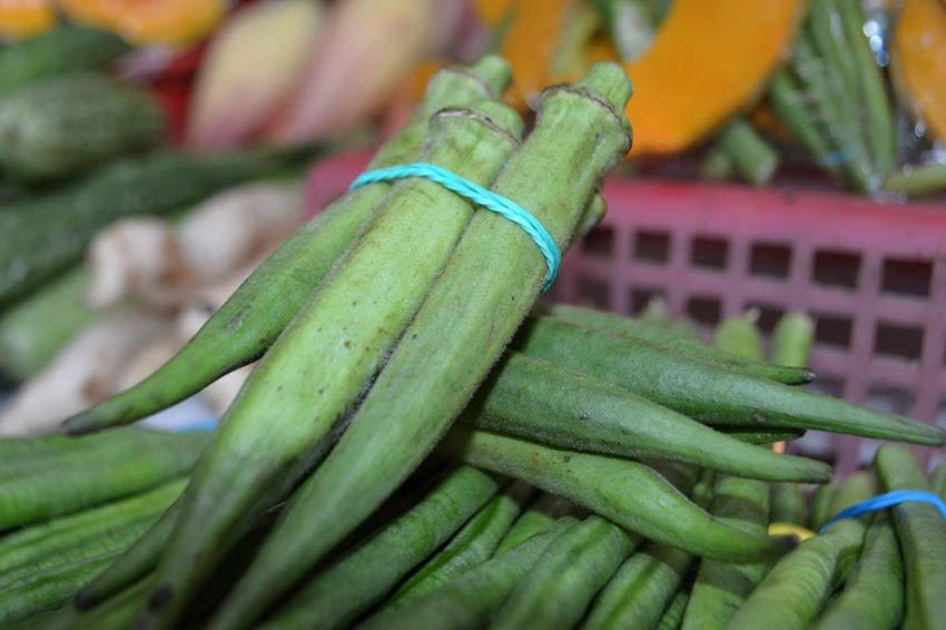 какие овощи бывают названия и фото