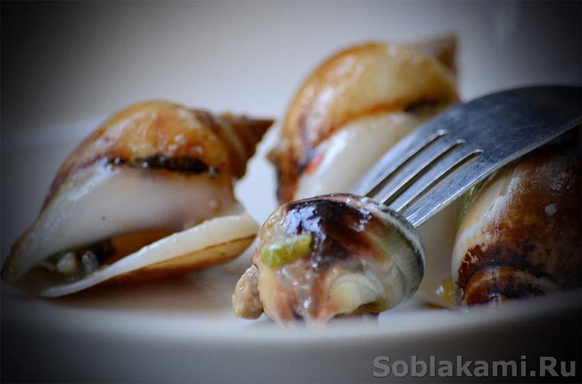 морепродукты фото, приготовление морепродуктов, рапаны
