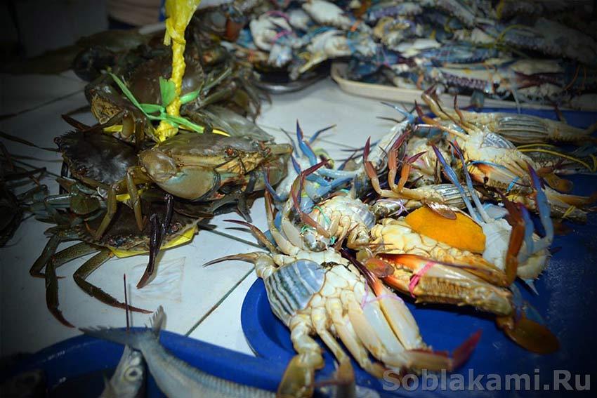 морепродукты фото, приготовление морепродуктов