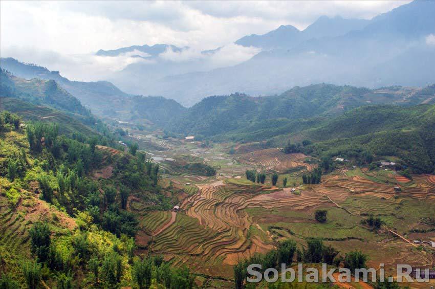 Во Вьетнам самостоятельно ТурПравда