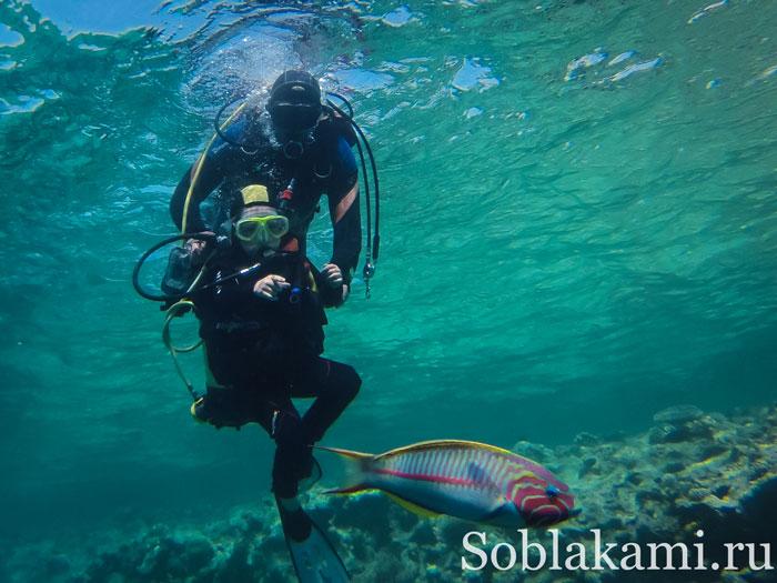 ребенок ныряет с аквалангом в Хургаде, фото