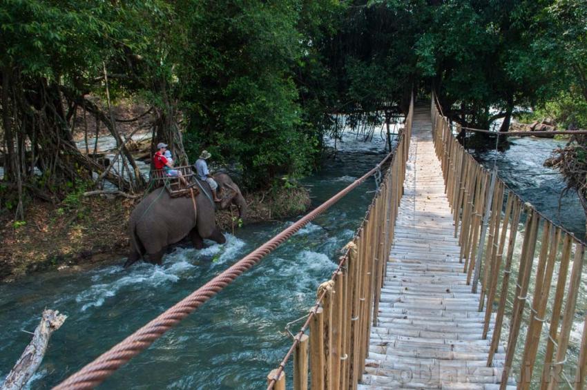 Буон Дон, Даклак, слоновья деревня