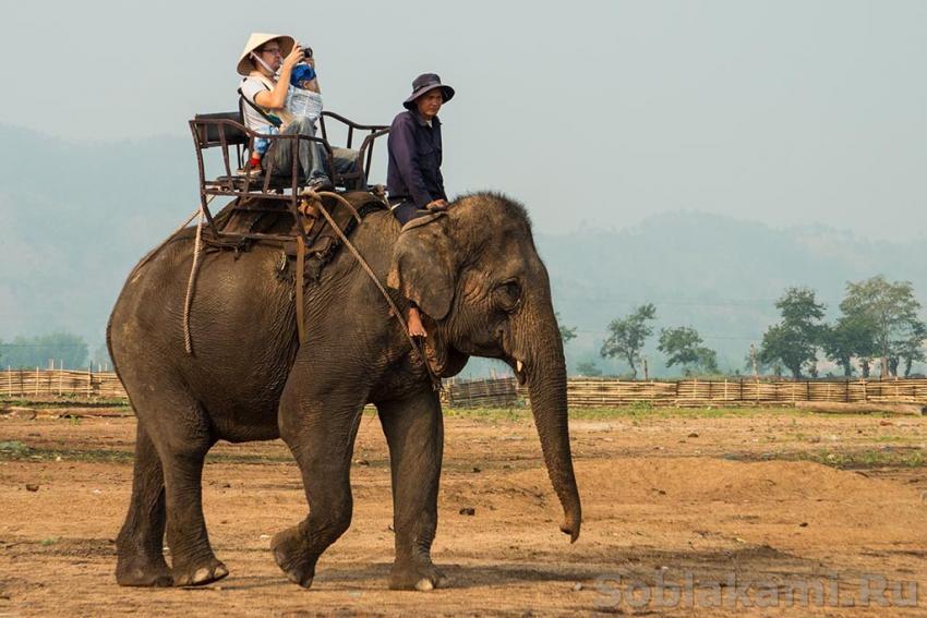 Даклак, Вьетнам, самостоятельное путешествие